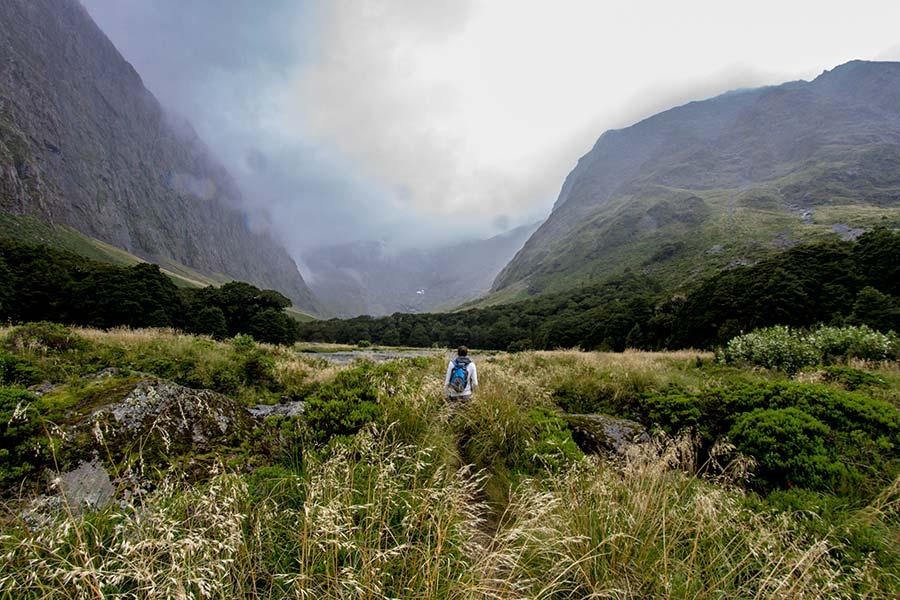 Gertrude Saddle Walk - New Zealand walking tracks