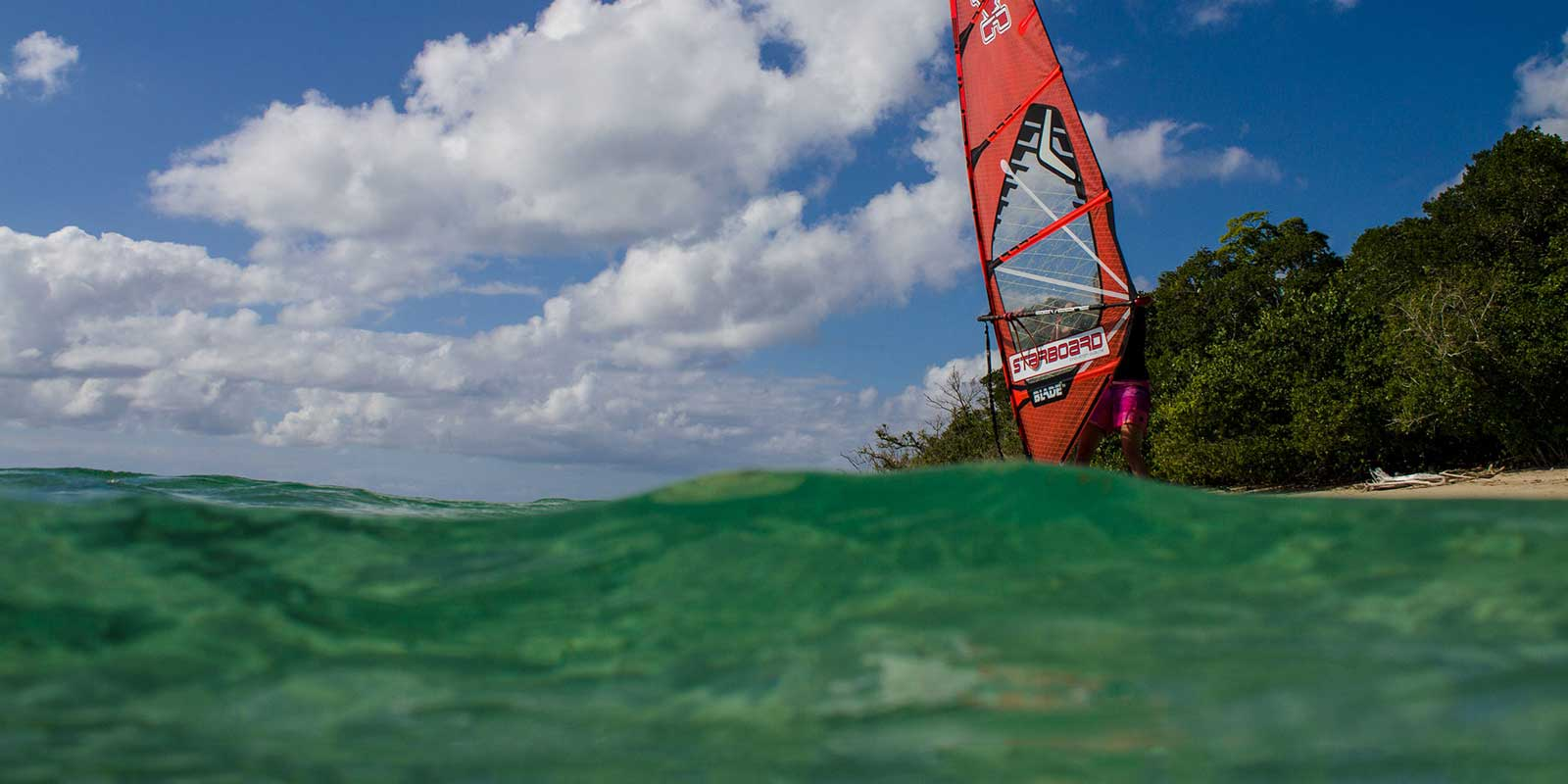 The Great Barrier Reef; shark sponsored windsurfing lessons