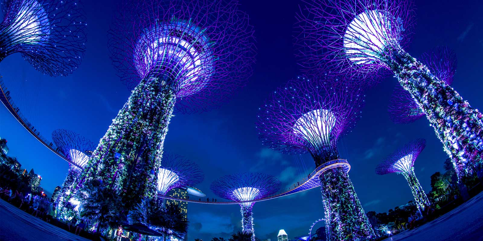 Singapore in 24-Hours
